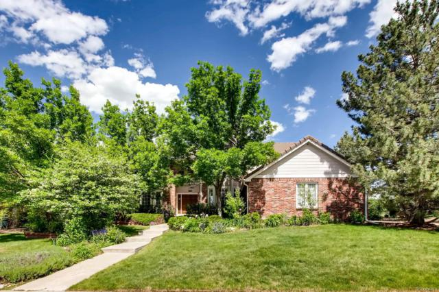 9756 Edgewater Place, Lone Tree, CO 80124 (#5012887) :: HomeSmart Realty Group