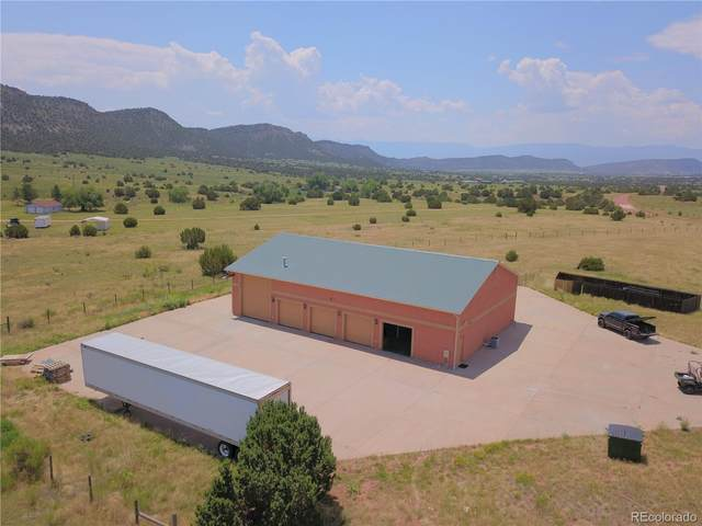 5090 County Road 132, Penrose, CO 81240 (#5016781) :: Signature Realty, Inc.