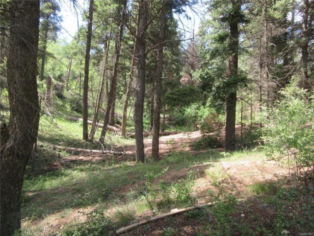 2450 Elk Park Road, Larkspur, CO 80118 (#5019678) :: Compass Colorado Realty