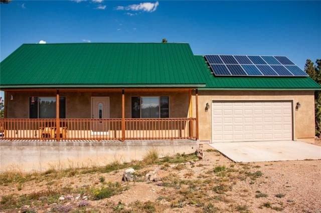 541 Ute Road, Westcliffe, CO 81252 (#5019756) :: 5281 Exclusive Homes Realty