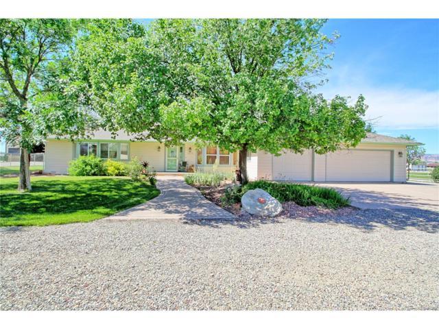 1873 L Road, Fruita, CO 81521 (MLS #5021841) :: 8z Real Estate