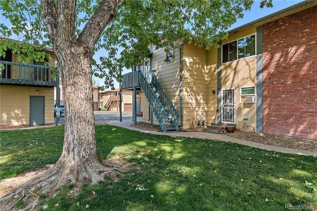 1042 Coronado Parkway D, Denver, CO 80229 (#5022487) :: West + Main Homes