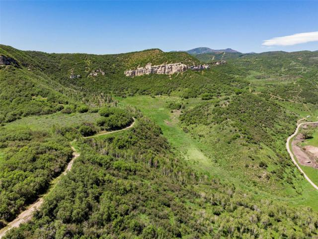 000 Grouse Ridge Lane, Steamboat Springs, CO 80487 (MLS #5024005) :: 8z Real Estate