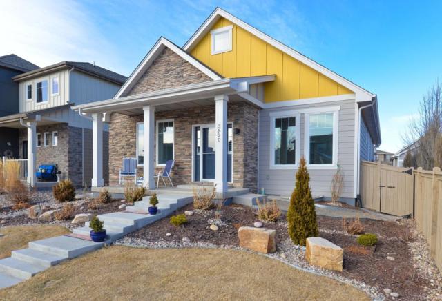 3820 Oak Shadow Way, Fort Collins, CO 80528 (MLS #5026626) :: Kittle Real Estate