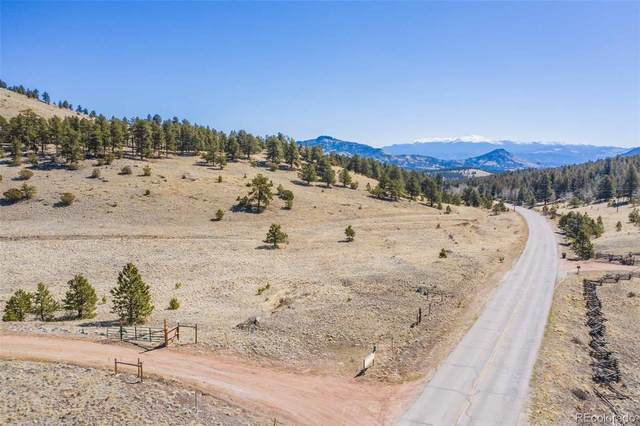 3771 County Rd 102, Guffey, CO 80820 (#5027183) :: The DeGrood Team