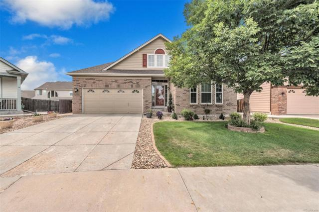 12231 Cook Court, Thornton, CO 80241 (MLS #5028630) :: 8z Real Estate