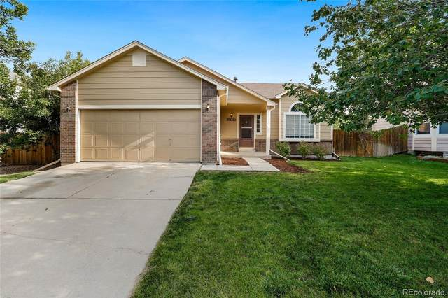 4177 Ashcroft Avenue, Castle Rock, CO 80104 (#5030354) :: Kimberly Austin Properties