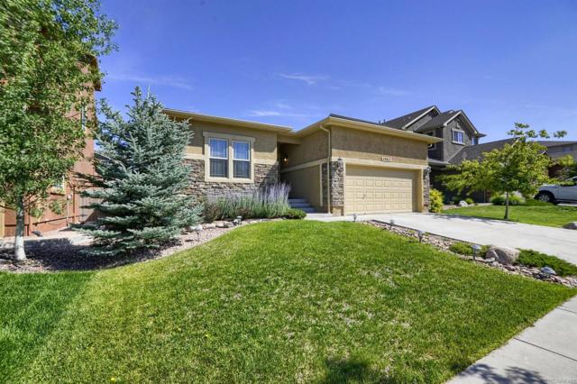 4862 Preachers Hollow Trail, Colorado Springs, CO 80924 (#5030616) :: Structure CO Group
