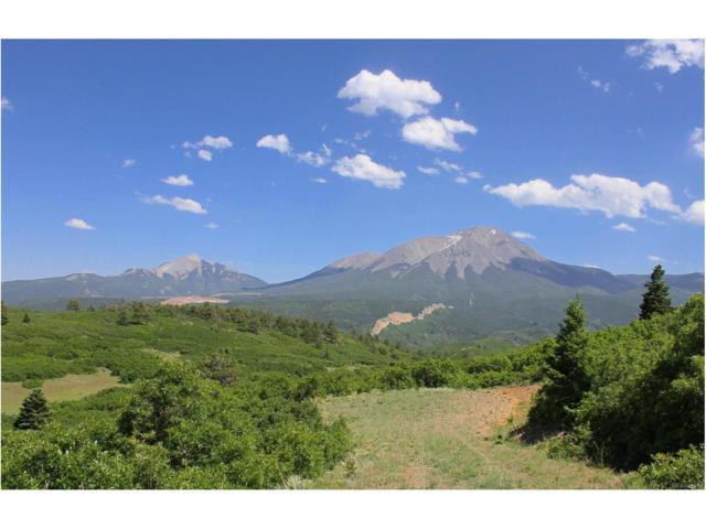 Longhorn Rd, La Veta, CO 81055 (#5032786) :: Wisdom Real Estate
