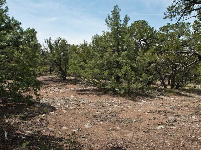 2206 Spanish Creek Rd & 2209 Lone Pine Ol, Crestone, CO 81131 (MLS #5039864) :: 8z Real Estate