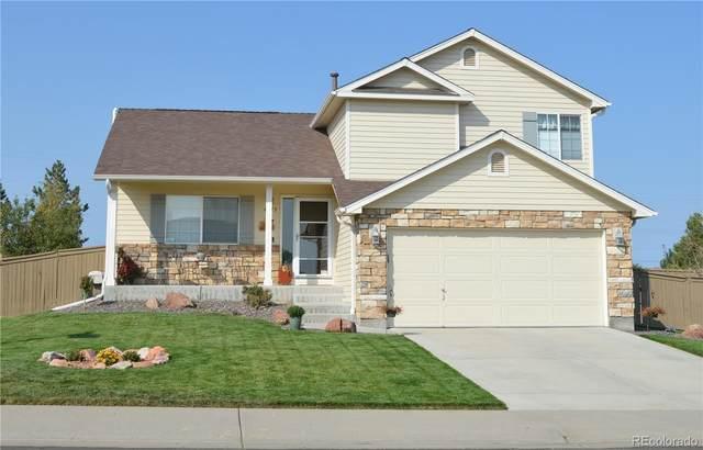 4873 Eckert Street, Castle Rock, CO 80104 (#5041872) :: Wisdom Real Estate