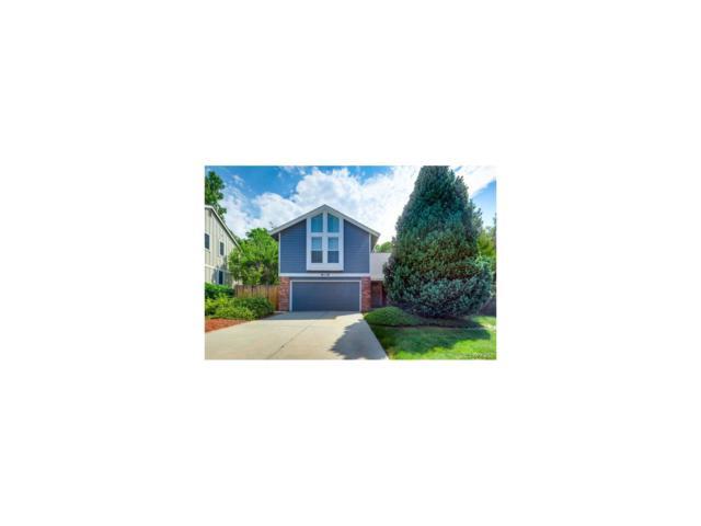 8138 S Wabash Court, Centennial, CO 80112 (MLS #5042833) :: 8z Real Estate