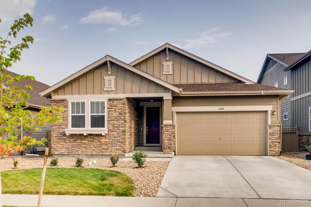 6688 W Jewell Place, Lakewood, CO 80227 (#5042991) :: Venterra Real Estate LLC