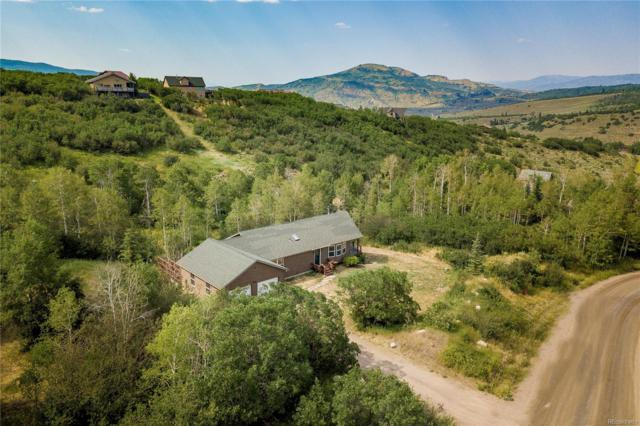 31080 Fallen Falcon Trail, Oak Creek, CO 80467 (#5044840) :: Bring Home Denver