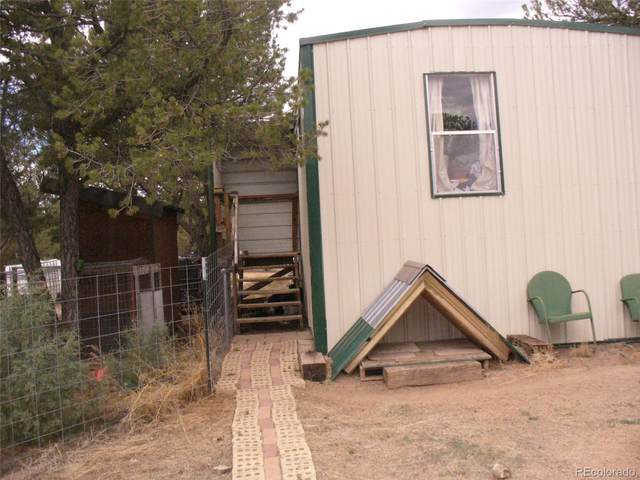 103 W View Place, Cotopaxi, CO 81223 (#5045261) :: Wisdom Real Estate