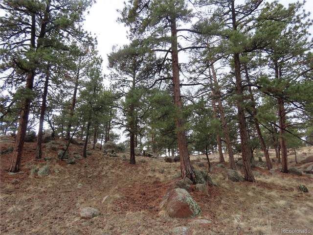 10133 County Rd 11, Florissant, CO 80816 (MLS #5046983) :: Bliss Realty Group