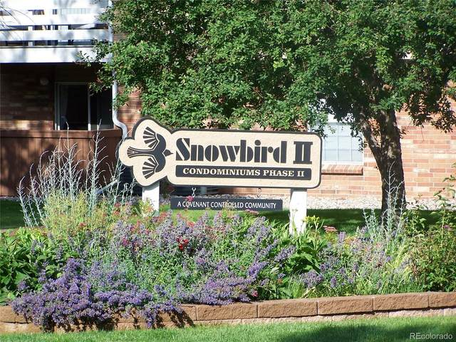 3314 S Ammons Street #104, Lakewood, CO 80227 (MLS #5049242) :: 8z Real Estate