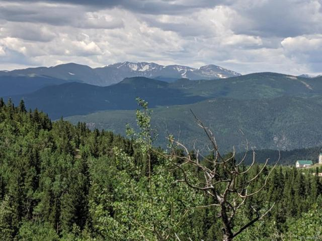 0 Bald Mountain And York Gulch Roads, Idaho Springs, CO 80452 (#5050894) :: Wisdom Real Estate