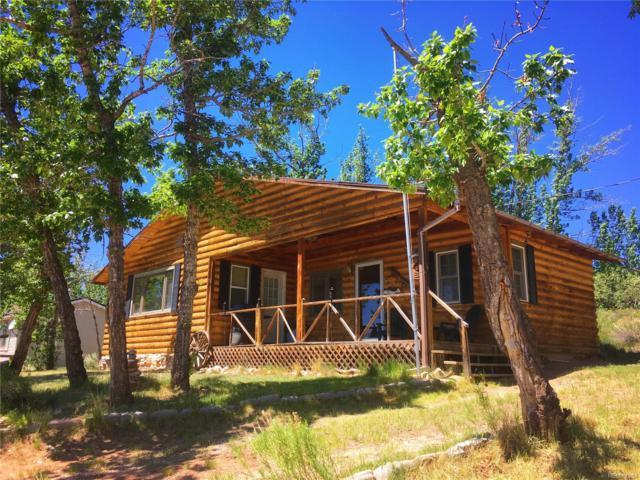 Cabin #4 Mt Massive Trout Club, Leadville, CO 80461 (MLS #5051057) :: 8z Real Estate