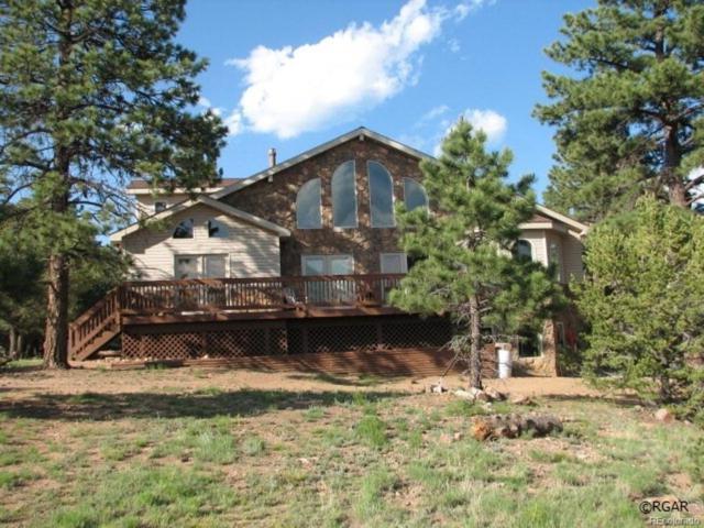 133 Pawnee Trail, Westcliffe, CO 81252 (#5051655) :: The Galo Garrido Group