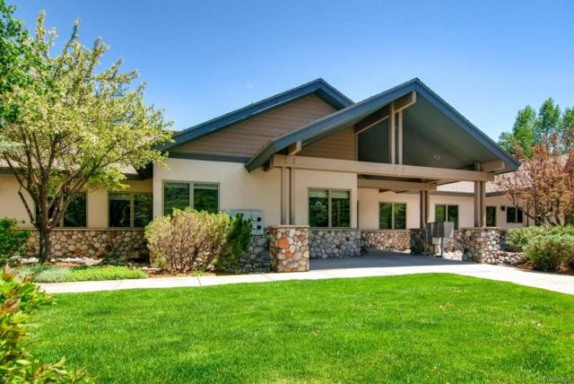 1495 Pine Grove Road, Steamboat Springs, CO 80487 (#5053853) :: House Hunters Colorado