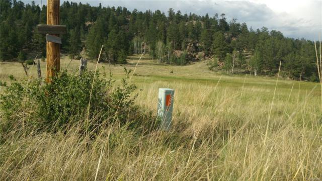 61 Canyon Drive, Florissant, CO 80816 (#5056738) :: The Heyl Group at Keller Williams