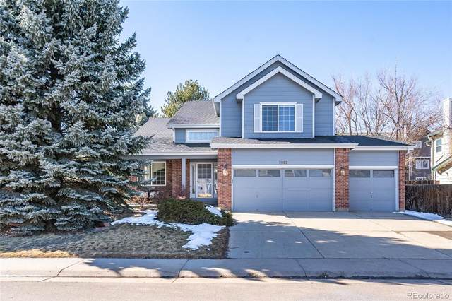 7882 Sweet Water Road, Lone Tree, CO 80124 (#5056890) :: Chateaux Realty Group