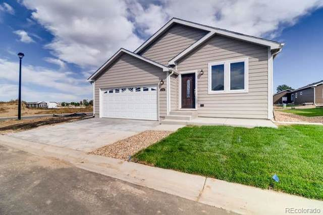 6320 Indian Paintbrush, Frederick, CO 80530 (#5059564) :: The Dixon Group