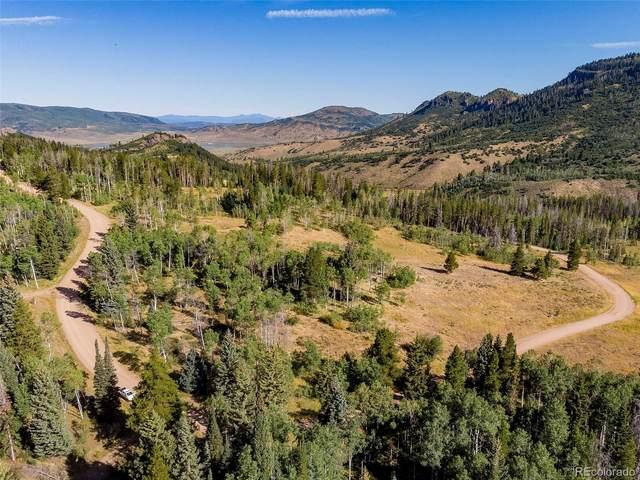 31620 Green Ridge Drive, Oak Creek, CO 80467 (#5061046) :: Real Estate Professionals