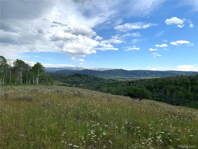 55916 Hannahs Way, Clark, CO 80428 (#5061258) :: Venterra Real Estate LLC