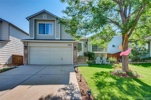 9729 Moss Rose Circle, Highlands Ranch, CO 80129 (#5062826) :: The Dixon Group