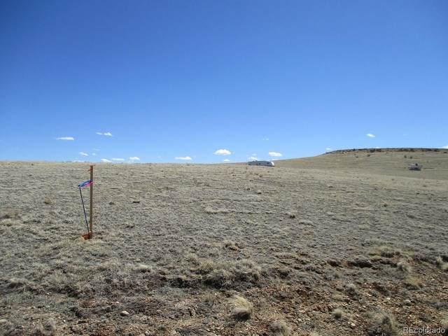 140 Ramrod Path, Como, CO 80432 (#5064863) :: The Margolis Team