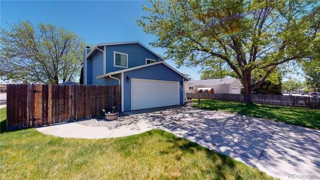 3400 Belmont Avenue, Evans, CO 80620 (MLS #5065112) :: Kittle Real Estate
