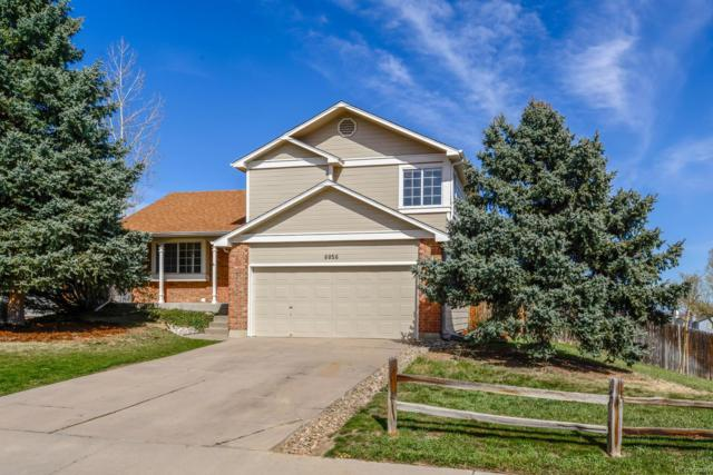 6056 S Pierson Street, Littleton, CO 80127 (#5065577) :: The Pete Cook Home Group