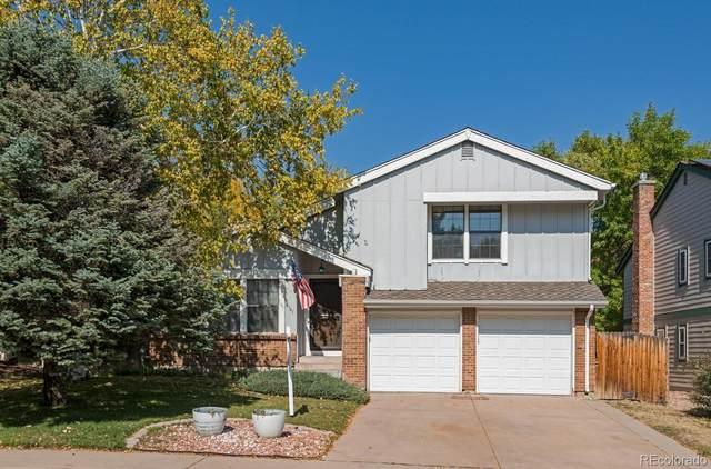 8141 S San Juan Range Road, Littleton, CO 80127 (MLS #5065884) :: Kittle Real Estate