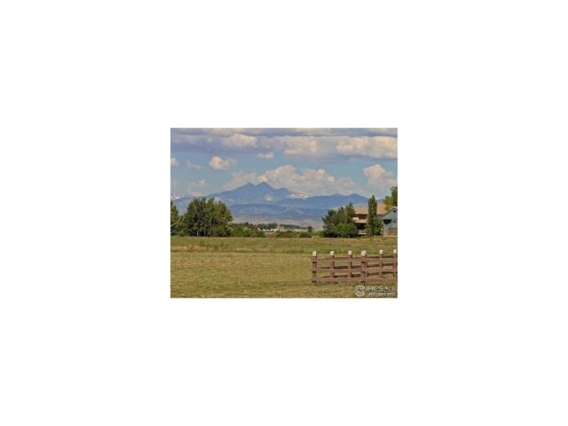 3928 Vale View Lane, Mead, CO 80542 (MLS #5067890) :: 8z Real Estate