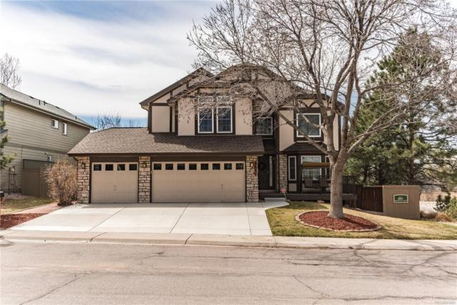 5041 N Blazingstar Trail, Castle Rock, CO 80109 (#5068221) :: Colorado Home Finder Realty