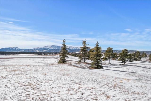19368 Royal Troon Drive, Monument, CO 80132 (MLS #5071076) :: 8z Real Estate