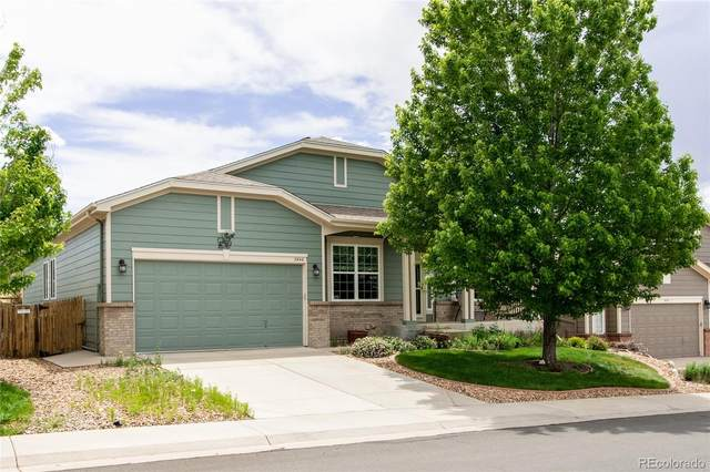 3840 Black Feather Trail, Castle Rock, CO 80104 (#5074928) :: Colorado Home Finder Realty
