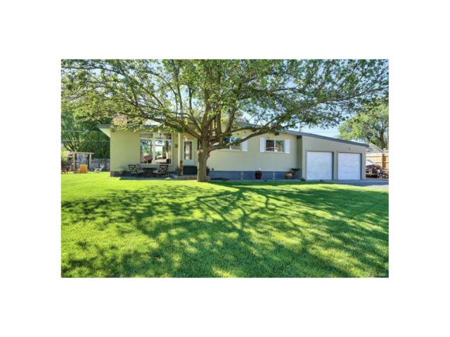 526 Mockingbird Lane, Grand Junction, CO 81507 (MLS #5074973) :: 8z Real Estate