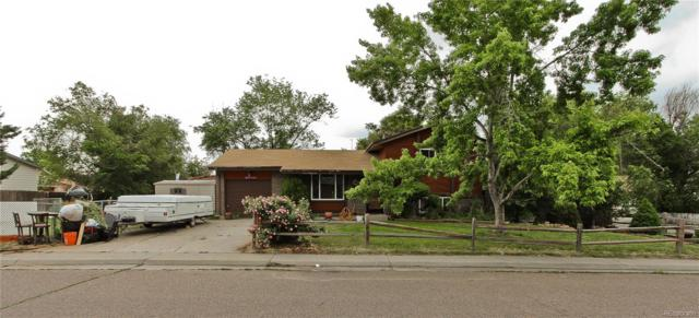 8270 Downing Drive, Denver, CO 80229 (#5079056) :: HomePopper