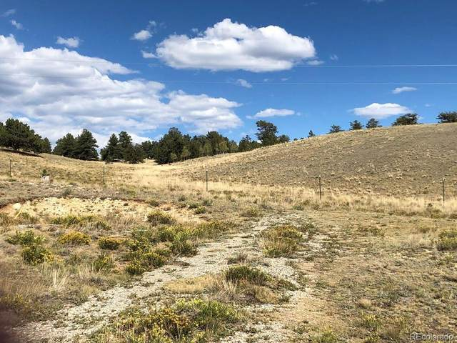 252 Cathy Drive, Hartsel, CO 80449 (MLS #5081728) :: Bliss Realty Group