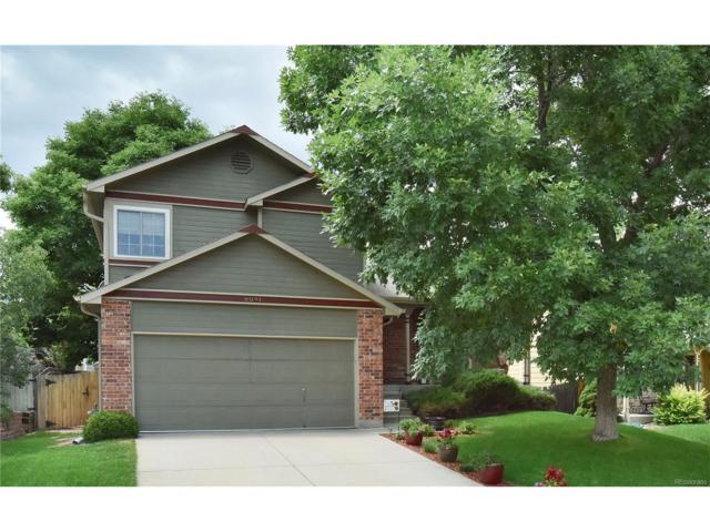 6091 S Robb Way, Littleton, CO 80127 (MLS #5082660) :: 8z Real Estate