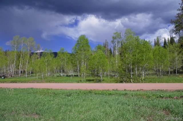 33177 Wenatchi Trail, Oak Creek, CO 80467 (#5083359) :: Berkshire Hathaway HomeServices Innovative Real Estate