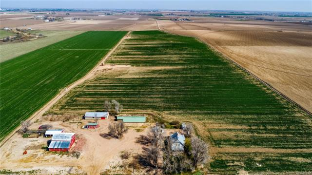 21417 County Road 66, Greeley, CO 80631 (MLS #5087650) :: 8z Real Estate
