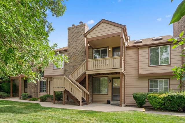 817 Summer Drive, Highlands Ranch, CO 80126 (#5087981) :: The Galo Garrido Group