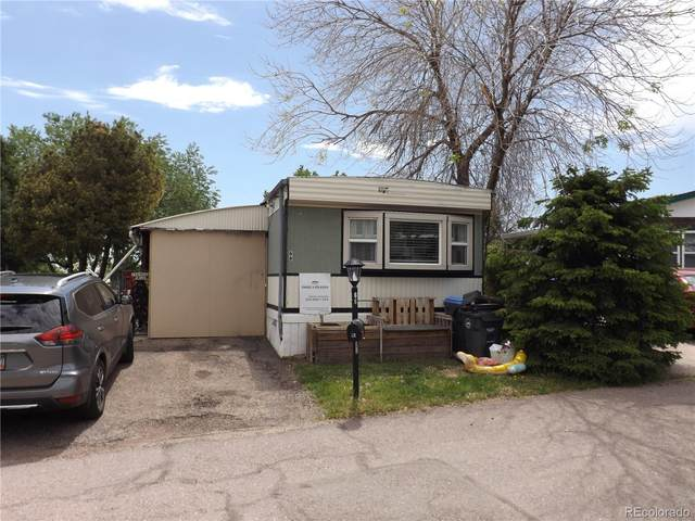 66 Marble Circle, Golden, CO 80401 (MLS #5088082) :: 8z Real Estate