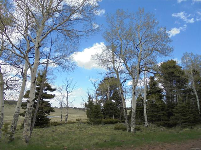 2127 Sigler Drive, Fort Garland, CO 81133 (#5089040) :: The Peak Properties Group