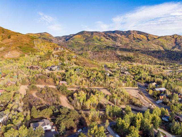 02 Fox Tail Trail, Steamboat Springs, CO 80487 (MLS #5090895) :: 8z Real Estate