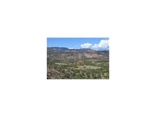 000 Garden Park Road, Canon City, CO 81212 (#5091557) :: Hometrackr Denver